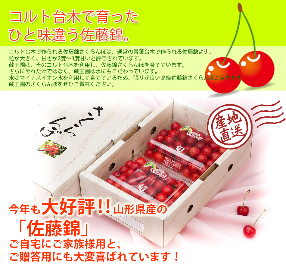 cherry_satonishiki